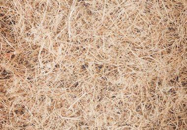 isolation-fibre de bois